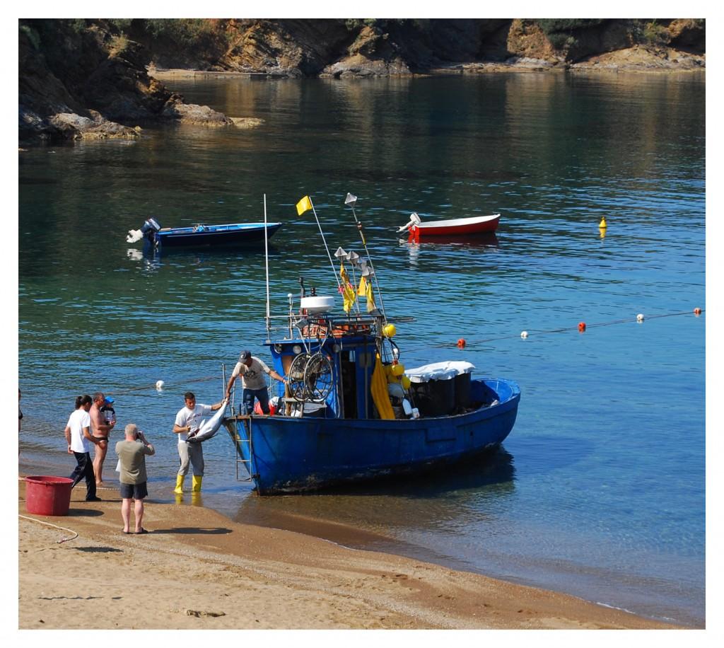 barca della pescheria (foto C. Colnago)