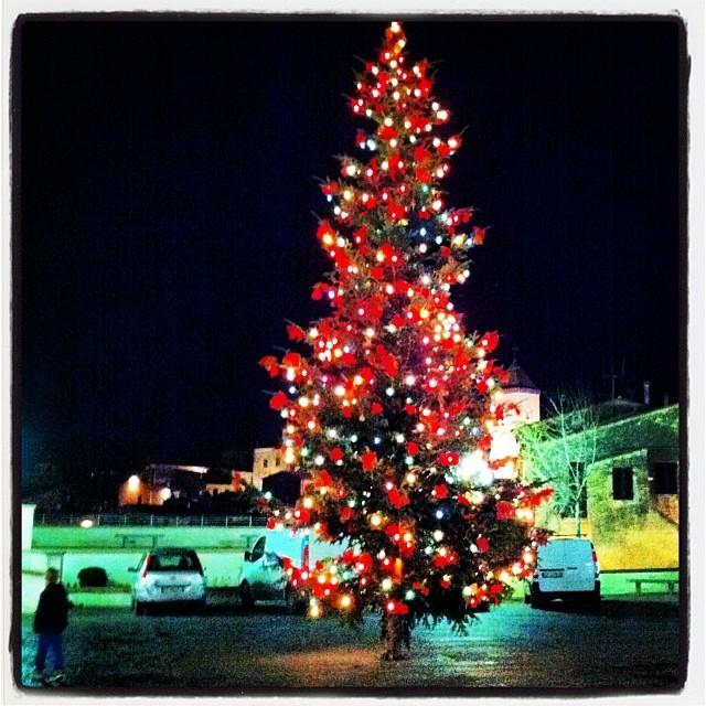 L'albero di Natale in piazza a Capoliveri nel 2013 (Foto Comune Capoliveri)