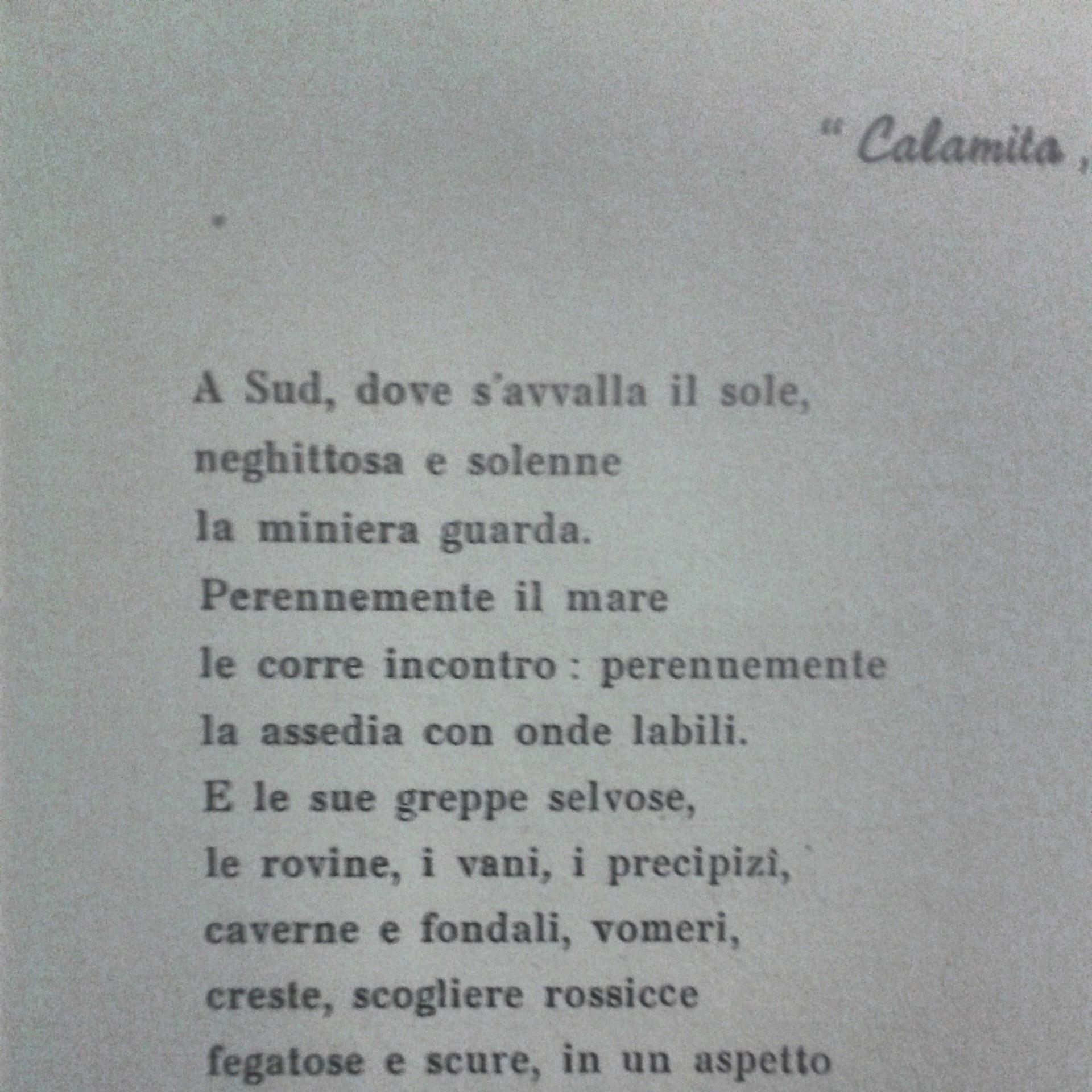 Calamita (Foto Nicola Carraresi)