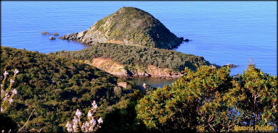 Isole Gemini (Foto Manuela Puliafito)